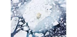 кружка авто-мото-005