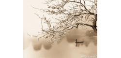 кружка свадьба -015