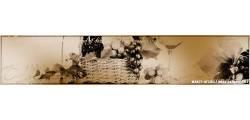 ship_0081