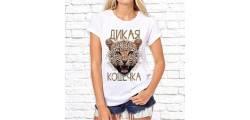 ship_0239