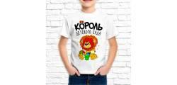 ship_0262