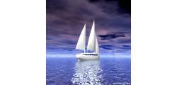 ship_0294