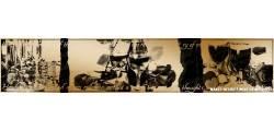 texturePP_0160