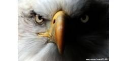 textilPP_0030