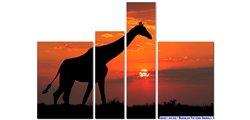 Modular Pattern Animals 5.jpg