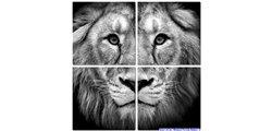 Modular Pattern Animals 12.jpg