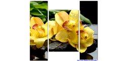 Modular Pattern Flowers 7.jpg
