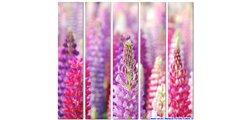 Modular Pattern Flowers 30.jpg