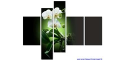 Modular Pattern Flowers 40.jpg