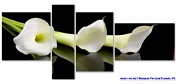 Modular Pattern Flowers 44.jpg