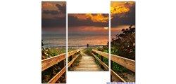 Modular Pattern Nature 11.jpg