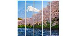 Modular Pattern Nature 16.jpg