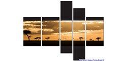 Modular Pattern Nature 18.jpg