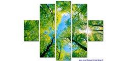 Modular Pattern Nature 22.jpg