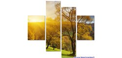 Modular Pattern Nature 24.jpg
