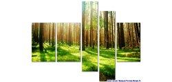 Modular Pattern Nature 25.jpg