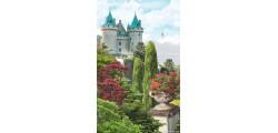 Modular Pattern Nature 27.jpg